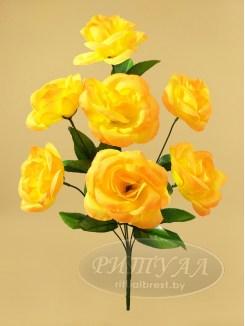 Роза БОКЕР 2