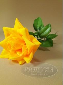 Роза остролистная